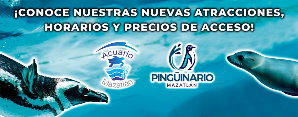 Mazatlan aquarium for Precio entrada aquarium